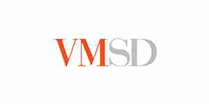 vmsd color logo for web design