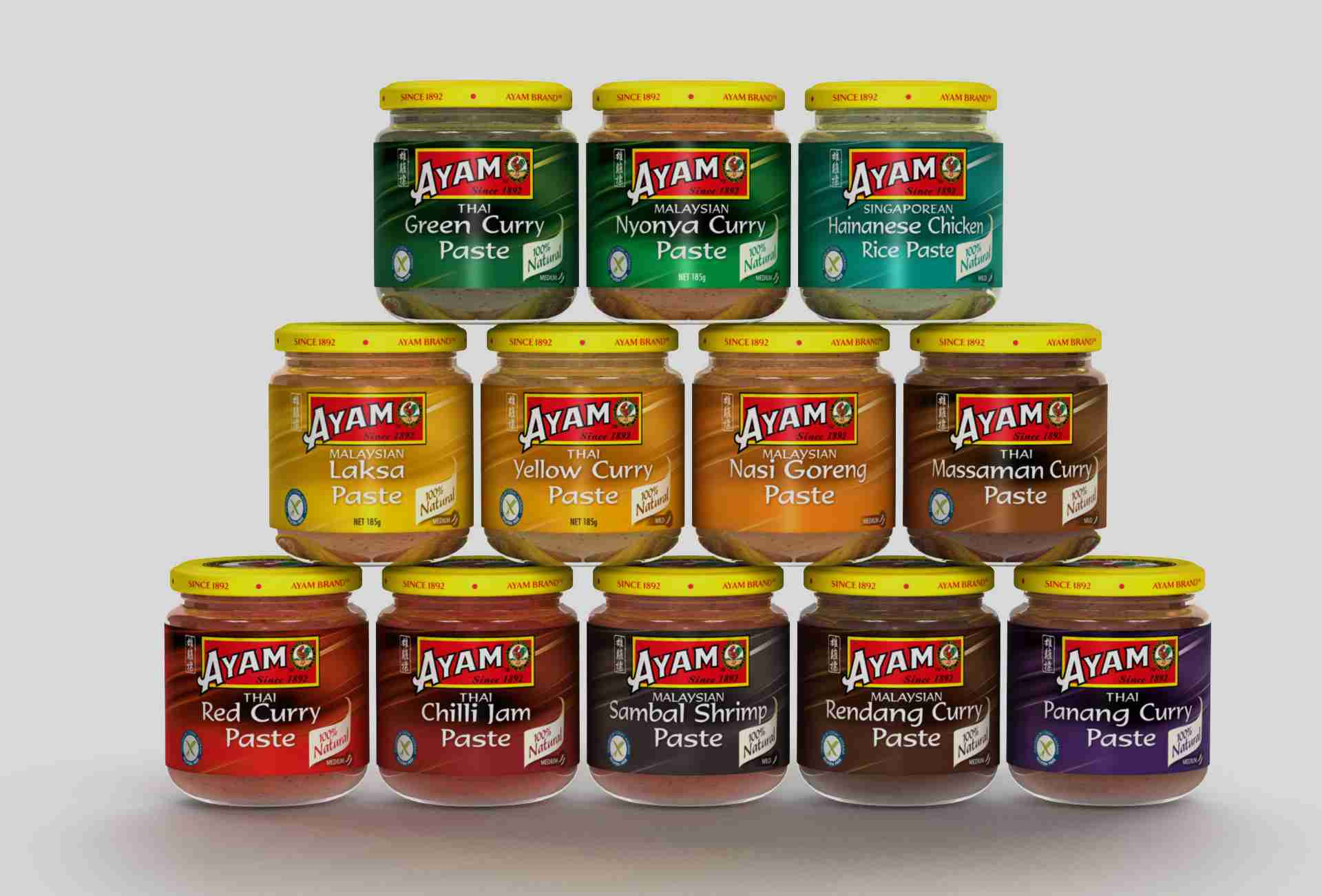 ayam brand product for web design