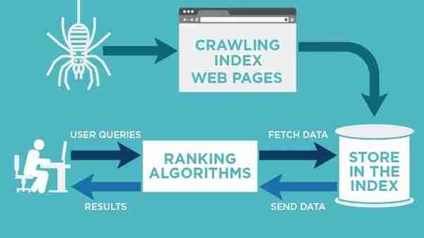 seo crawler web development step