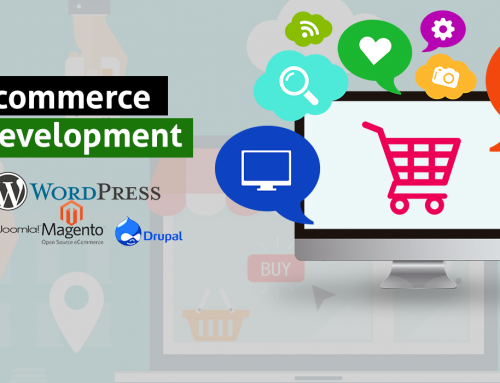 5 Things You Need to Consider Before Plunging into E-Commerce Development